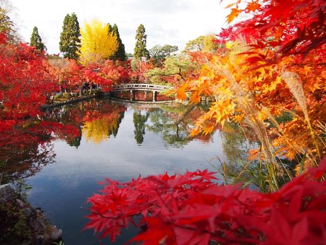 【2019】京都の紅葉32選!見ごろ別に紹介。ライトアップや穴場情報も