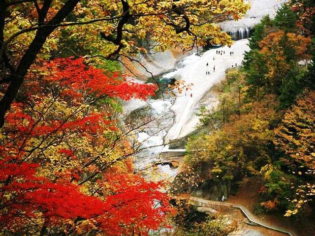 【関東】絶景の紅葉スポット7選!東京から日帰りで楽しもう
