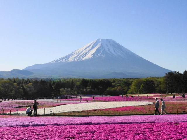 日本最長! 富士山を眺められる「三島スカイウォーク(箱根西麓・三島大吊橋)」って知ってる?