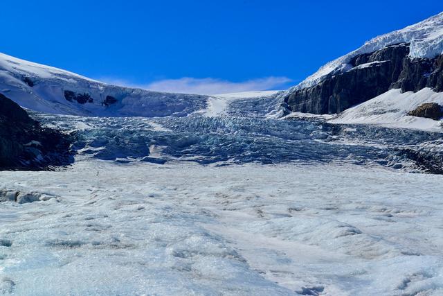 コロンビア大氷原