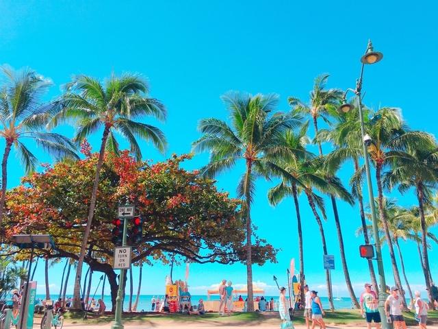 ハワイに行きたくなったら