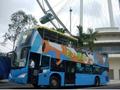 【ナイトツアー】オープントップバス&リバークルーズツアー<日本語ガイド>