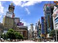 上海半日観光A 豫園&骨董品市場&外灘 他