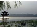 水の都「杭州」 日帰りツアー<上海発>