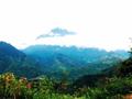 世界遺産キナバル公園・先住民族の村とポーリン温泉観光ツアー<1日/コタキナバル発>
