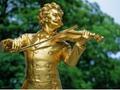 【My bus】シェーンブルン宮殿入場!ウィーン市内観光半日ツアー<ウィーン発>