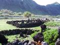 オアフ島から元気をもらおう♪ ハワイ・パワースポット&ヒーリングツアー