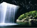 世界遺産ナチュラルブリッジ国立公園 野生の土ボタルと星空観賞 送迎付きツアー by Tour Gold Coast