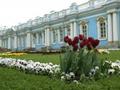 エカテリーナ宮殿とツァールスコエ・セロー観光ツアー<サンクトペテルブルク発>