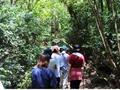 ジャングルハイキング エコアドベンチャー送迎付きツアー 日本語ガイドが自然豊かなスポットをご案内!
