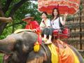 気軽に午後からのアユタヤ半日観光ツアー<人気の象乗り体験付き>