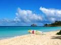 天国の海カイルア〜ノースショア(ハレイワ)観光 ビーチにショッピング この木なんの木&ウミガメ 人気スポット凝縮1日満喫ツアー