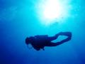 体験ダイビング/アクアブルー