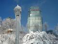 冬季のナイアガラ観光ツアー<午前・終日/11〜3月/日本語ガイド/ナイアガラ発>