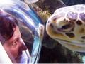 海の生き物たちと水中散歩!アンダーウォーターワールド シートレックチケット予約<日本語ガイド>