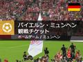 バイエルン・ミュンヘン サッカー観戦チケット<ホームゲーム/ミュンヘン>