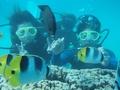 イパオビーチ シュノーケリングor選べるマリンスポーツ <ヒルトンホテルのプール&ランチ付きプランあり>